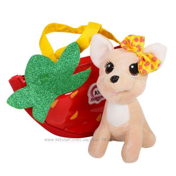 Собачка в сумочке Кикки