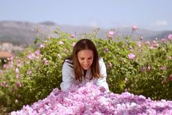 Натуральное 100 эфирное масло Роза Абсолют