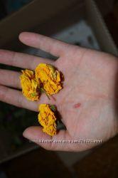 Фото 4: сухоцвет роз