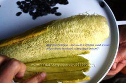 Семена Люффы, люфа - растущая мочалка