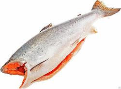 Кижуч-дикий лосось. глубокой заморозки без льда. тушки без голов и потрохов