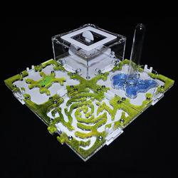 Муравьиная ферма, муравьи, корм, аксессуары 4 Модуля Комплект M