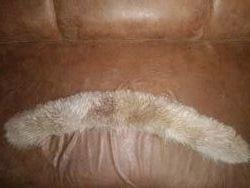 меховой воротник опушка из натурального меха