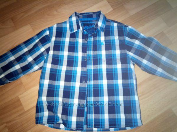 Рубашка Rebel, 5-6лет