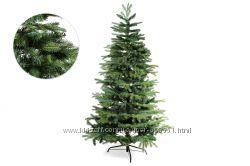 Новогодние елки - зеленые и заснеженные