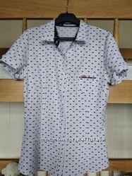 Рубашки блузки ХС-С