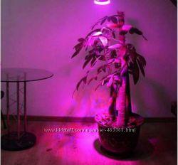 Фитолампа, лампочка для растений , рассада 10W