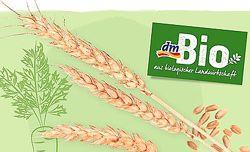 Dm BIO полезные семена и злаки - Германия