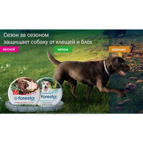 Foresto ошейник от блох и клещей для собак