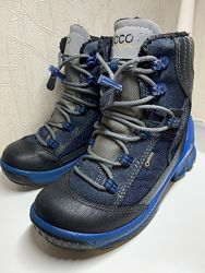 Ботинки зима ЕССО biom 31 размер