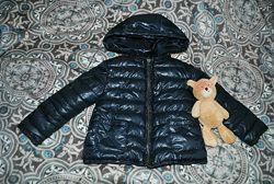 Zara курточка дівчача