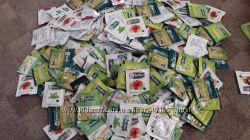 Чай в пакетиках  черный зеленый манго майский чай свежайший чай в инди