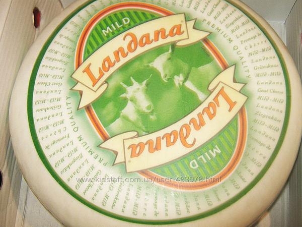 СП свежих европейских сыров под распил