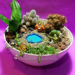 Мини сад, флорариум, цветы, подарок