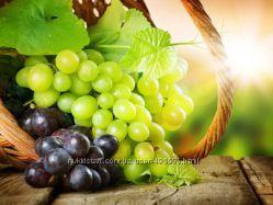 Вино-градное натуральное