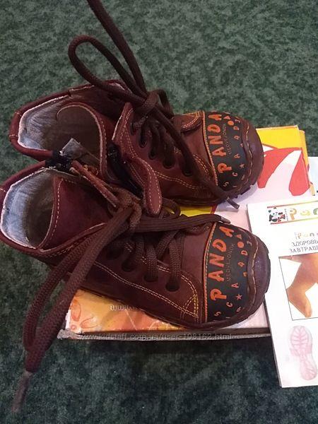 Кожаные ботинки Panda 21 размер
