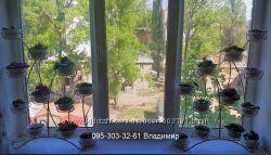 Подставка для цветов  Парус на 12 чаш
