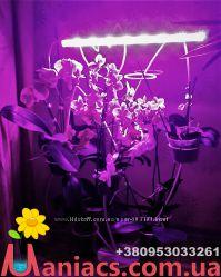 Тюльпан на 14 колец для орхидей