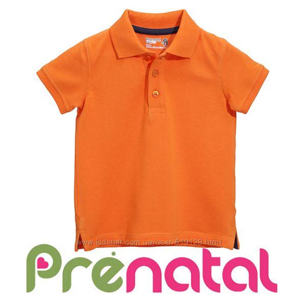 Поло на короткий рукав для малюків 3-9 місяців від фірми Prenatal Італія