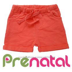 Яскраві бавовняні шортики для малюків 6-18 місяців фірми Prenatal Італія