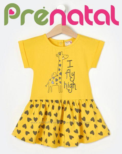 Ніжні літні плаття для найменших принцесс 3-9 місяців фірми Prenatal Італія