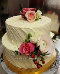 Мой  сладкий мир-Ривьера торт. Новый ассортимент
