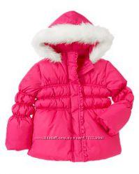 Куртка Crazy8, р. L10-12
