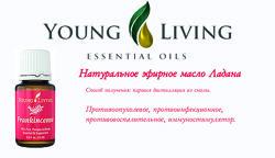 Терапевтические эфирные масла ЯНГ Ливинг по оптовой цене