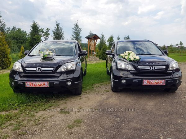 Прокат Оренда Авто на Весілля Honda CR-V- PRADO