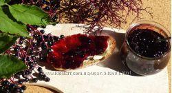 Ягоды бузины, калины, почки еловые в меду-ягоды Долгожителей и Разумных люд