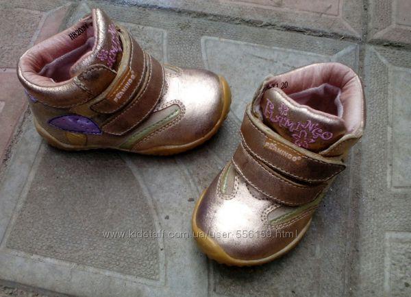 демисезонные ботиночки Flamingo