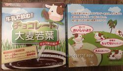 Аодзиру со вкусом шоколада. Зелёный сок. Очень полезен Япония