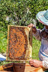 Домашний мед без сахара, полностью натуральный