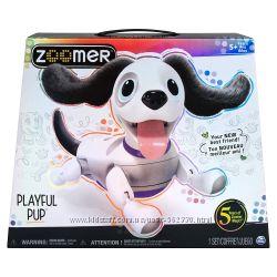 Интерактивный роботизированный щенок Зумер Zoomer Playful Pup Spin Master