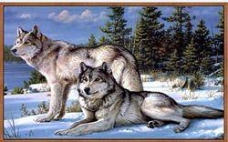 Алмазная вышивка набор Пара волков