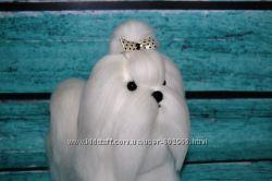 Мальтийская болонка, мальтезе. Валяная собака белая.