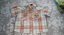 Стильна сорочка Next у клітинку, з принтом