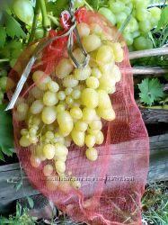 Мешочки-сетка для винограда от ос