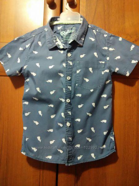 сорочка літня для хлопчика