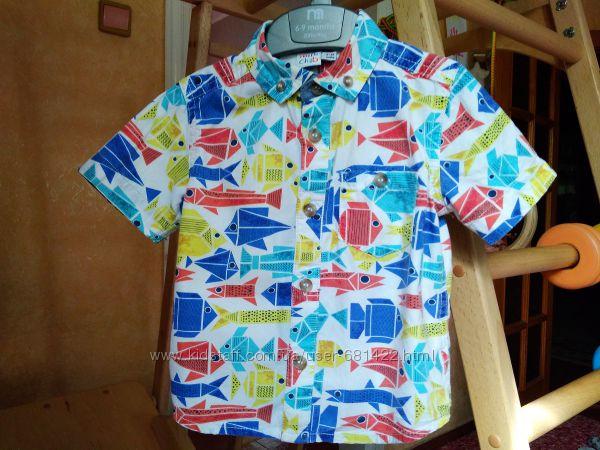 Яркая рубашка mini club 9-12 mth