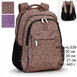 Школьные рюкзаки Dolly  539