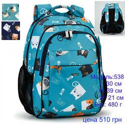 Школьные рюкзаки Dolly новинки