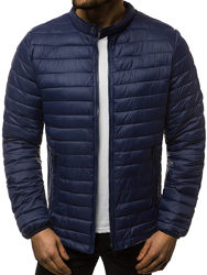 Куртка мужская демисезонная легкая 2 варианта