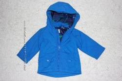 Легкая весенняя куртка ветровка Bluezoo на 3-6 месяцев рост 80 см