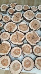 Срез туи дерева круглый, 3- 20см