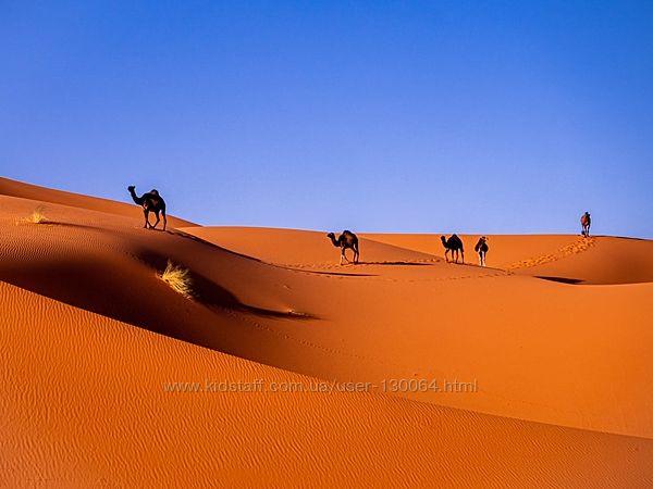 Тури в пустелю Сахара