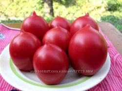 Готовая рассада - томатов в ассортименте