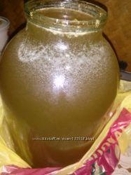 Натуральный свежий  мед. цена за 3-литра
