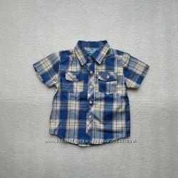 Большой выбор рубашек Глория Джинс