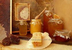 Мёд разнотравие 2019